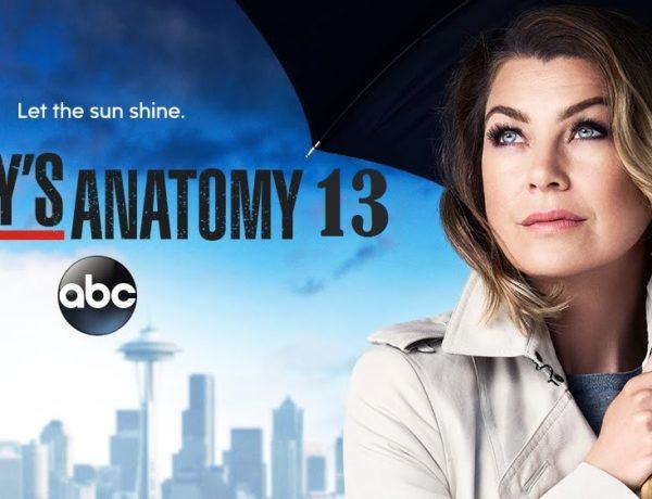 Grey's Anatomy 13 anticipazioni: l'attesa è agli sgoccioli!